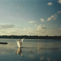 Mayim: Celebration of Water